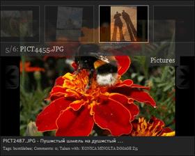 Google Photogallery Gadget